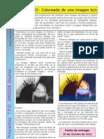 Proyecto 02 Coloreado 12-13