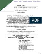 Elections Litigation Brief CEE