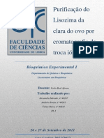 RELATÓRIO 1 - Purificação do Lisozima da clara do ovo por cromatografia de troca iónica