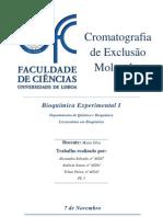 RELATÓRIO  - Cromatografia de exclusão molecular