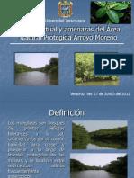 Arroyo Moreno_Final (2) [Autoguardado]