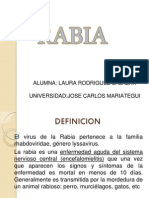 la rabia (microbiologia)