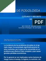 Taller de Podologia(2)