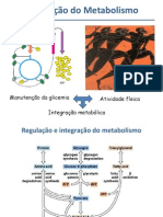 integração metabólicaset2012 (1)