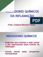 MEDIADORES INFLAMAÇÃO.2