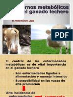 5 Vaca Caida