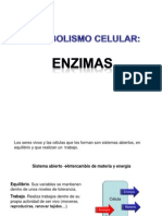 Metabolism o Celular