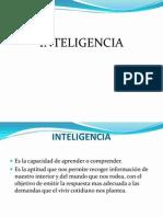 INTELIGENCIA 97