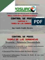 CAPÍTULO 4 - TEORÍA DE LAS SURGENCIAS