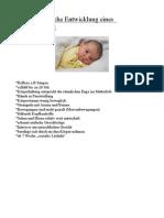 Entwicklungsschritte PDF