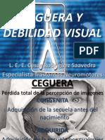 Exposicion Ceguera y Debilidad Visual