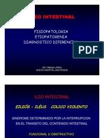 Ileo Intestinal