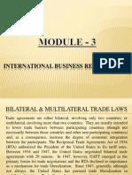 International Business (2)