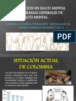 Intervencion en Salud Mental en Programas Generales