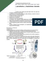 03 - Infecciones parasitarias