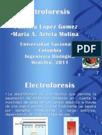 exposicion electroforesis