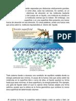 CARACTERÍSTICAS FUNDAMENTALES DE LOS LÍQUIDOS F3