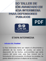 Curso Taller de Litigacion Avanzado en Audiencia Intermedia Para Defensores Publicos (1)
