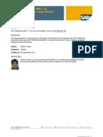 SAP NetWeaver BW 7.3 New Capabilities and Future