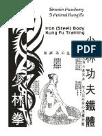 Work Book Shaolin Iron Body Kungfu Draft