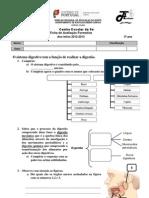 EM3-02 Sistema Digestivo
