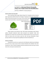 Daun Sirih (Piper Betle L.) - Informasi Botani, Etnomedik, Fitokimia, Farmakologi, Serta Teknik Isolasi Dan Identifikasinya