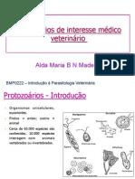 Protozoarios_MedVet_2012