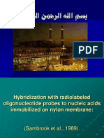 Hybridization Prof Dr Naggar