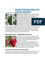 What is Schisandra Chinensis Berry and What Are Schizandra Benefits?