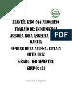 Plantel Iebo 014 Progreso