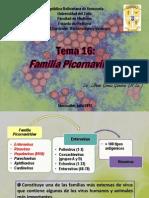 TEMA 16 Picornavirus