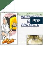Ingenieria - Pan Integral