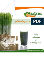 Wheatgrass Recipe
