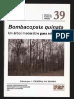 Bombacopsis quinata - Un árbol maderable para reforestar