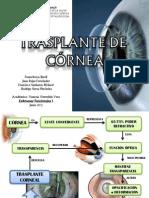 Ppt Trasplante de Cornea