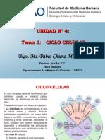 Tema 1 Ciclo Celular
