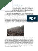 Kerusakan Flora Dan Fauna Di Indonesia