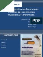 ATP Preformado