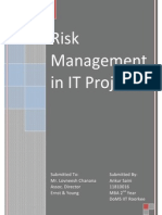 Term Paper_Risk Management in IT Projects