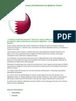 Le Qatar finance des camps d'entraînement du djihad en Tunisie