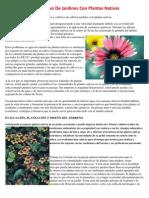 Una Guía Para El Cultivo De Jardines Con Plantas Nativas