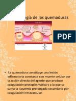 Fisiopatología_de_las_quemaduras