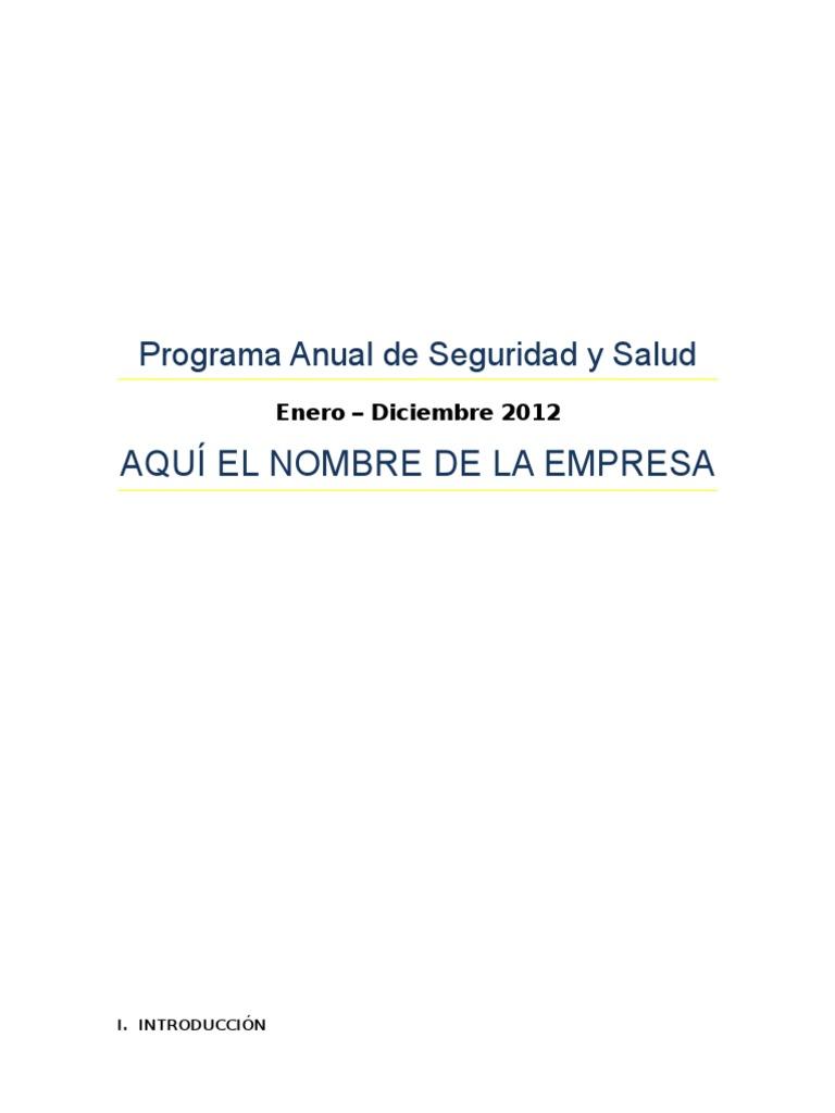 Ejemplo Programa Anual de Seguridad y Salud
