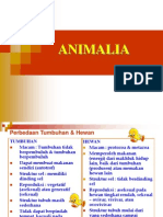 ANIMALIA-Porifera & Coelenterata