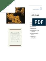 Capítulo 3 teoría microbiología general