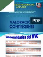 VALORACION CONTINGENTE_G4