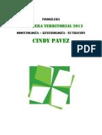 Programa CT Cindy Pavez NAU
