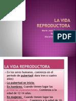 Biologia Vida Reproductora