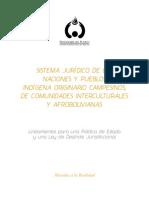 Sistema jurídico de las Naciones y Pueblos Indígena Originario Campesinos de comunidades interculturales y afrobolivianas