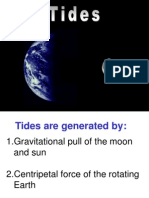 010 Tides